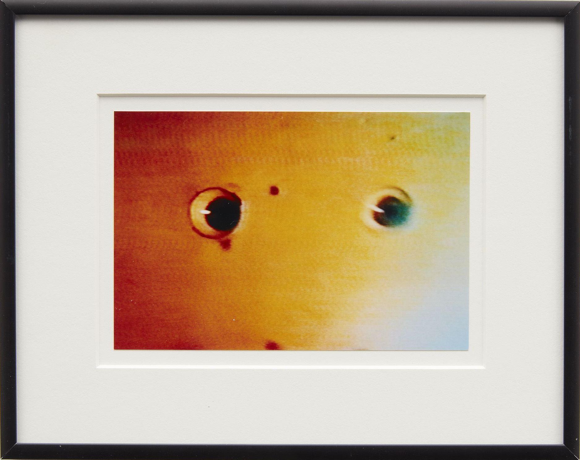 Reckless Eyeballs, 2006