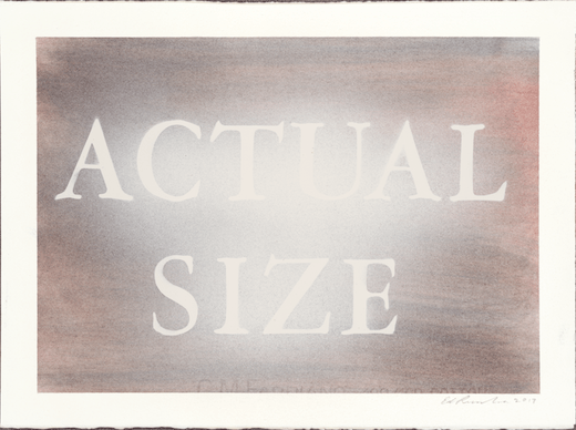 Actual Size, 2017
